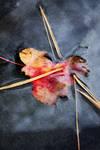 Fall Heart by palandir-anann