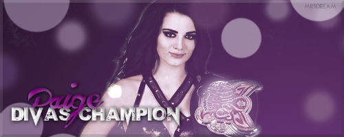 XTaintedTopaz 3 2 WWE Newest Divas Champion Paige Banner By MrsDream