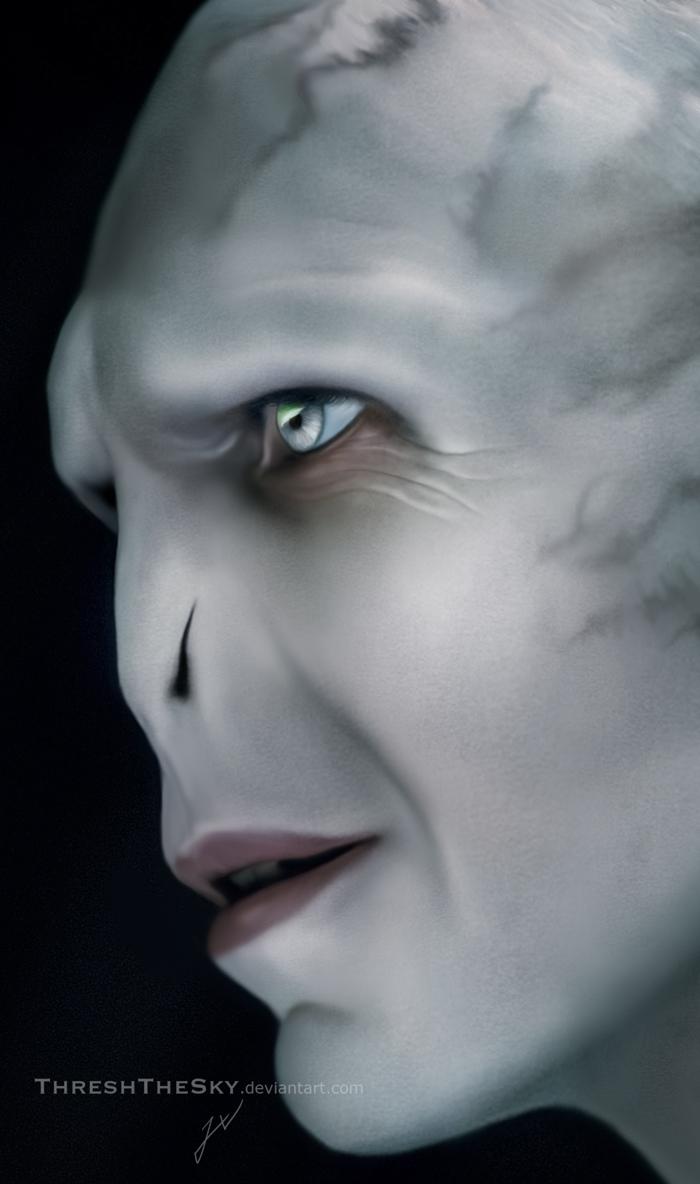 Harry Potter Lord Voldemort By Threshthesky On Deviantart