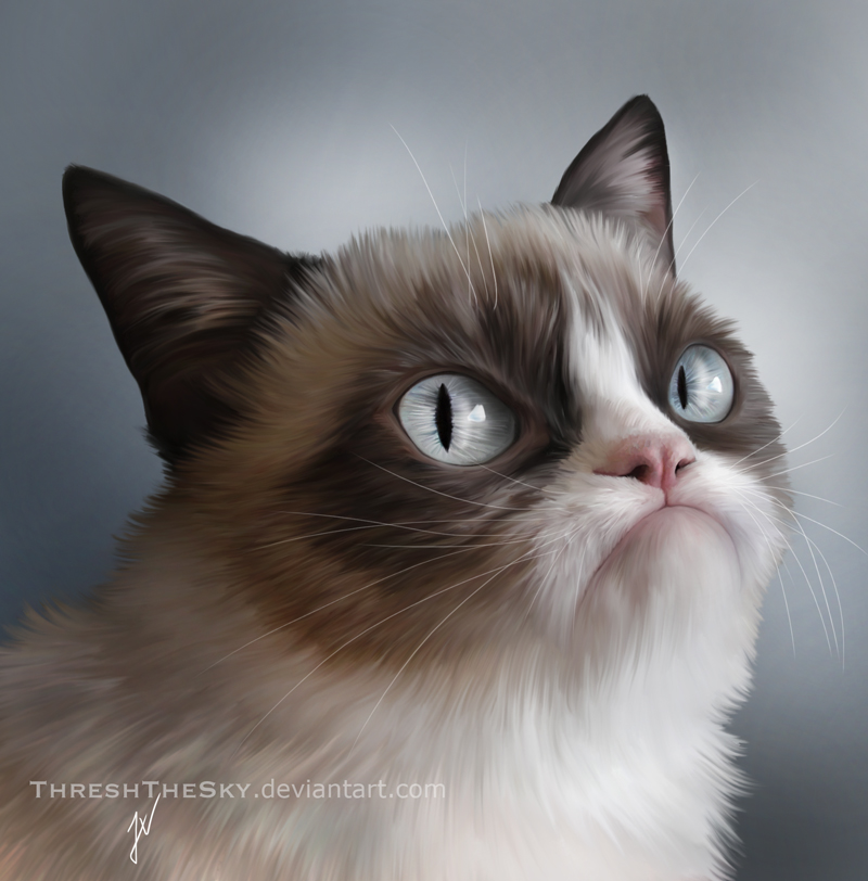 Grumpy Cat by ThreshTheSky