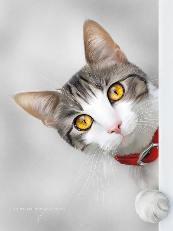 'Sup? by ThreshTheSky