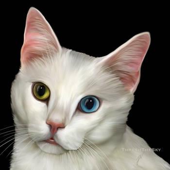 Feline Gems by ThreshTheSky