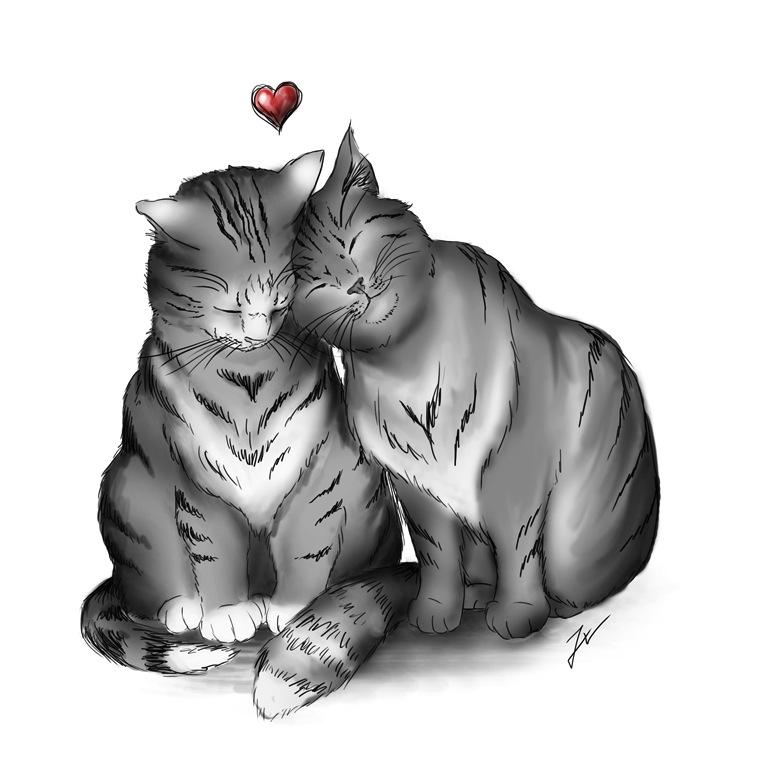 Kitty Love by ThreshTheSky