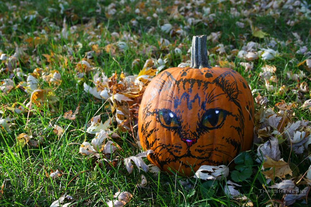 Felis Pumpkinus by ThreshTheSky