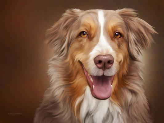 Caramel Canine