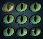 Cat Eye (Painting Steps)