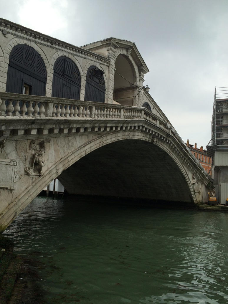 Rialto Bridge in Venice Italy by That1Ginger