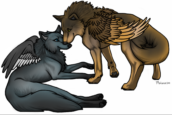 Wolf Mating Drawing
