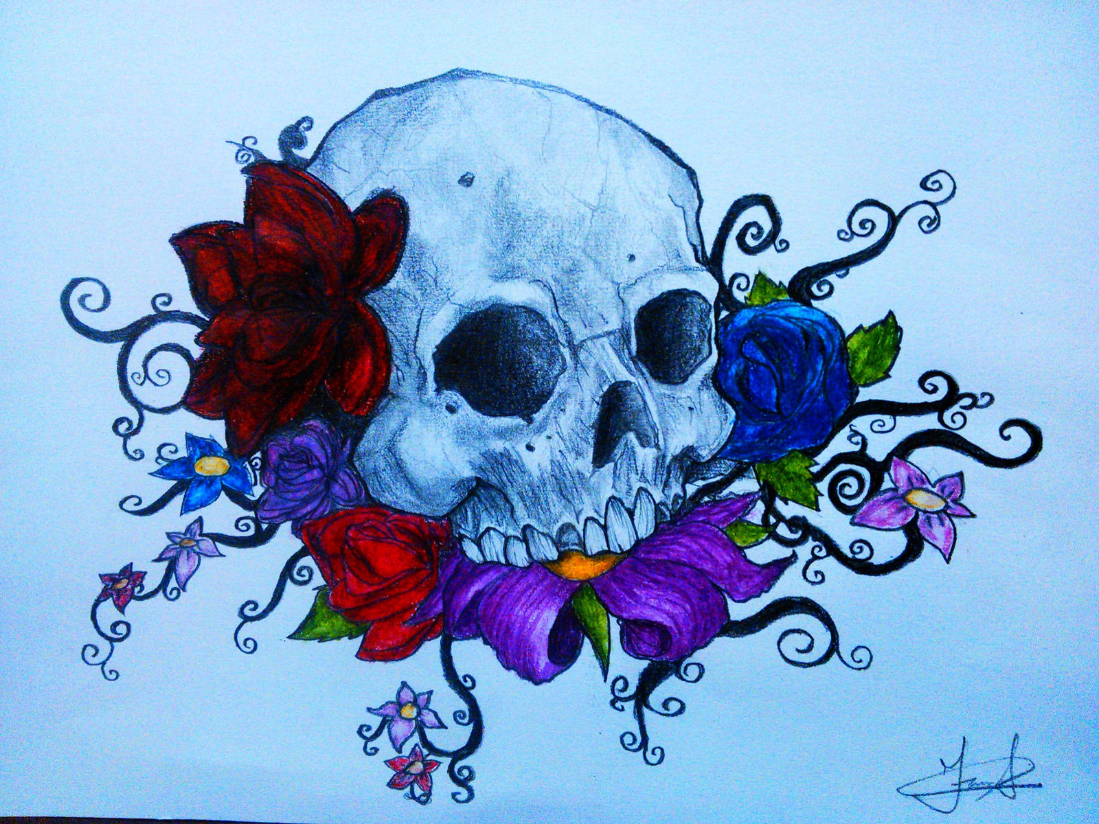 Skull and Flowers by f4rS on DeviantArt