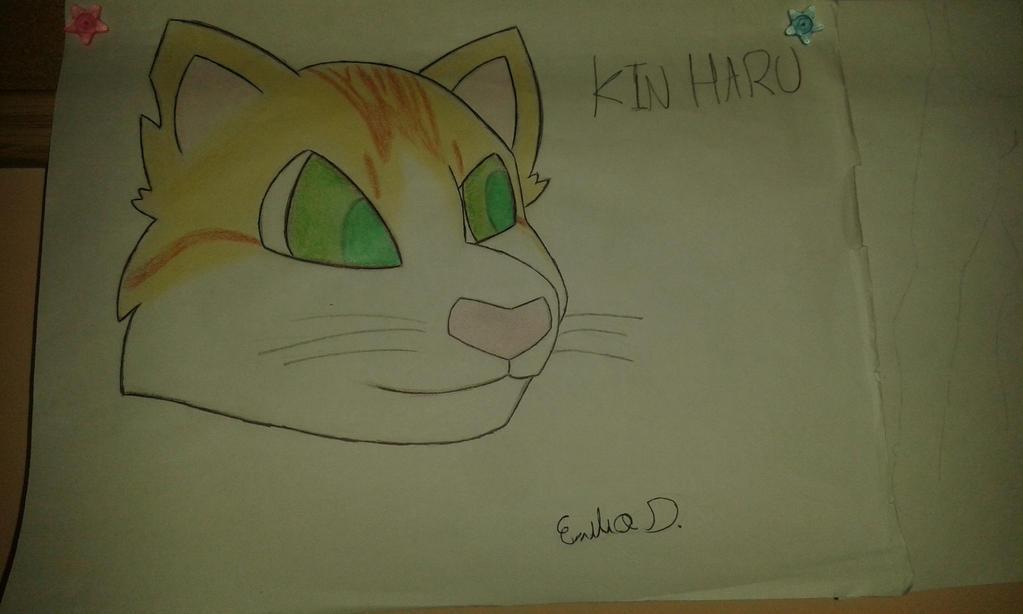 Kin Haru remasterizado by SetoMat