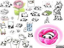 Tare Pandas by lil--boo