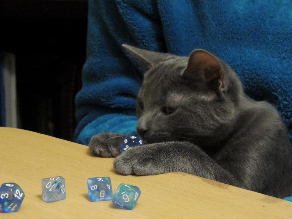 kitten_goes_dice_by_rainmoon11-d75070l.jpg