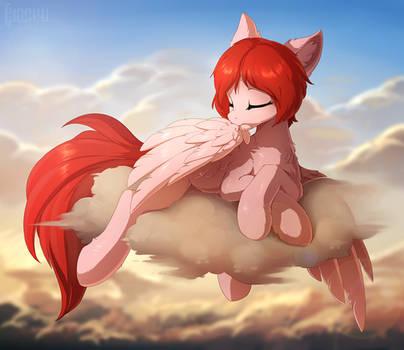 Pegasus business