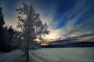 Early winter by Elfvingphotography