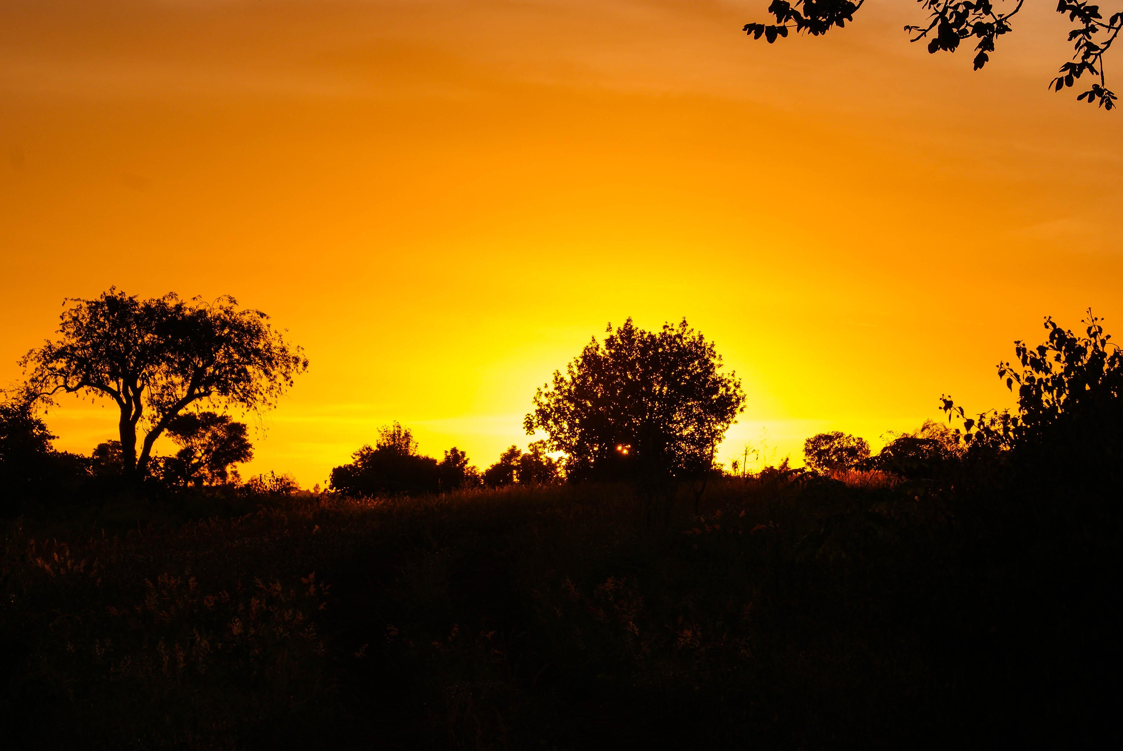 Till the Sun Rises Again by praline815