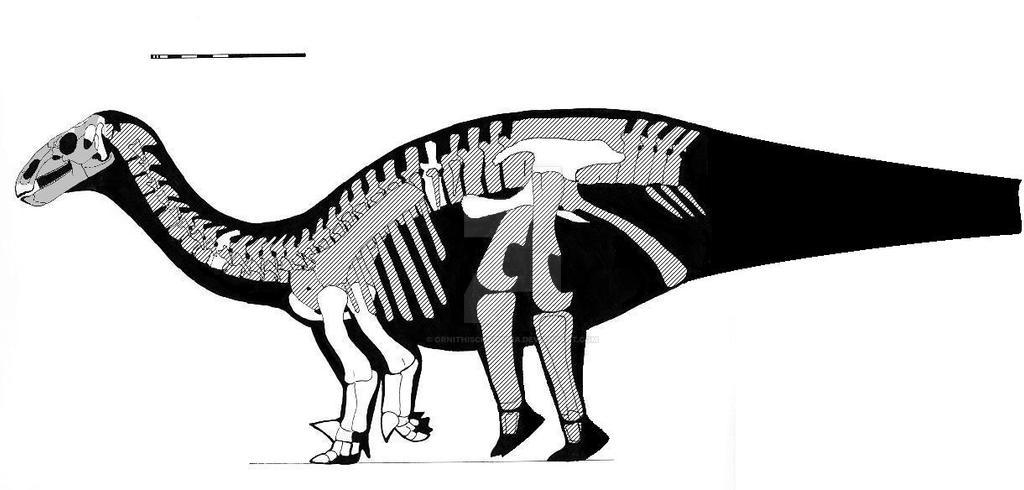 Lurdusaurus arenatus skeletal reconstruction