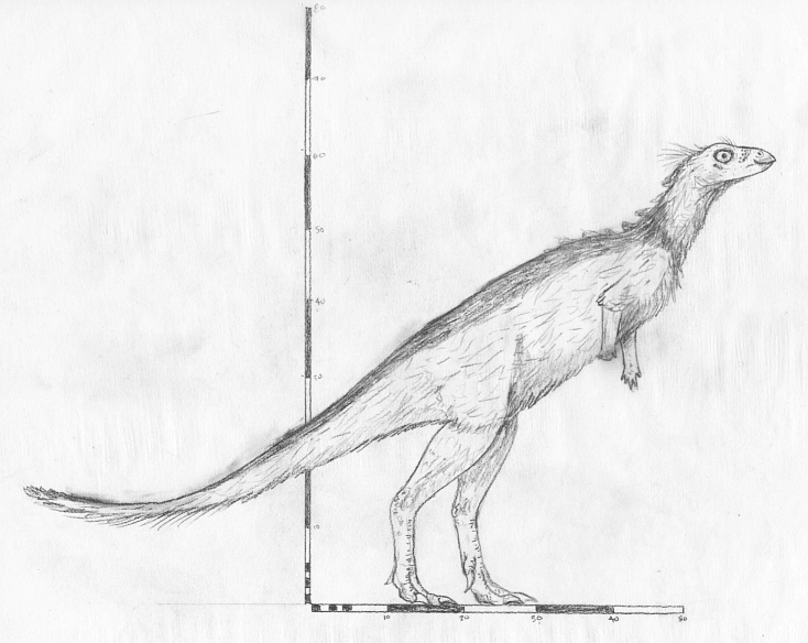 Sketch of Changchunsaurus parvus by ornithischophilia