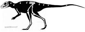 Fruitadens haagororum skeletal reconstruction