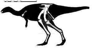 Valdosaurus canaliculatus skeletal reconstruction