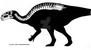 Equijubus normani skeletal reconstruction