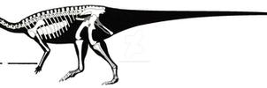Talenkauen santacrucensis skeletal restoration