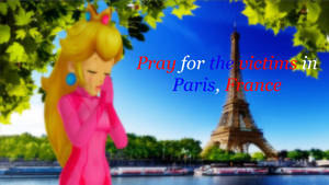 Pray for the victims in Paris, France