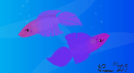 Pisces by DrawDesign