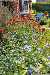 Our pretty garden