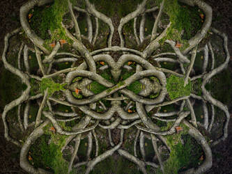 Infinity-Roots