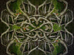 Infinity-Roots by MatzeR