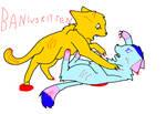 Bani Vs Kitten