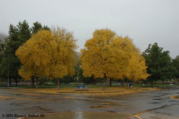 Chelan, Washington, Oct. 2006
