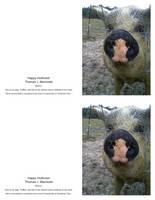 HappyHolinose GreetingCard QuarterFold Portrait1 M by madshutterbug