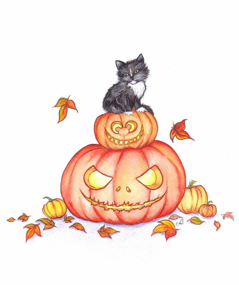 Pumpkin by RavenSavage