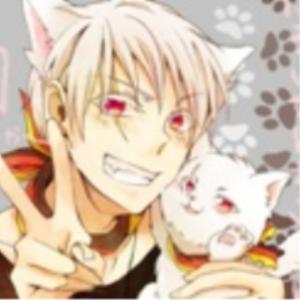 Nekotan-no-Yume's Profile Picture