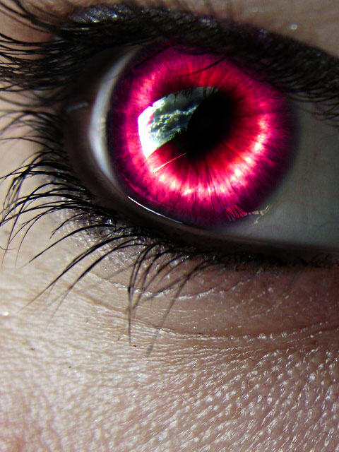 Eye Love You