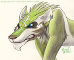 [Traditional] Wolf Link by PouassonDeOro