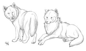 Wolf Lineart 2