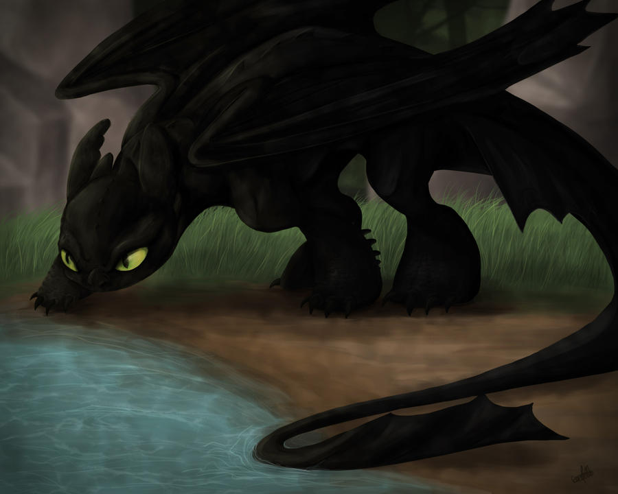 Alistair, Little Red ((Newest Update)) Night_fury_by_spiritwollf-d3w497y