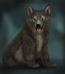 Wolf Pup by Spiritwollf