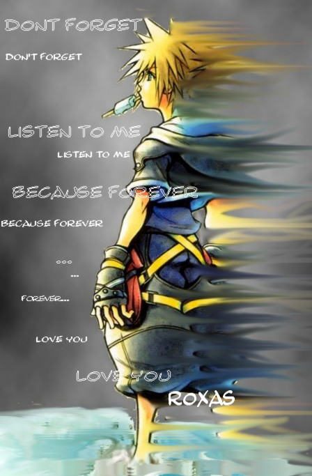 Sora And Roxas Back To Back