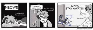 nightcat comic by starplexus