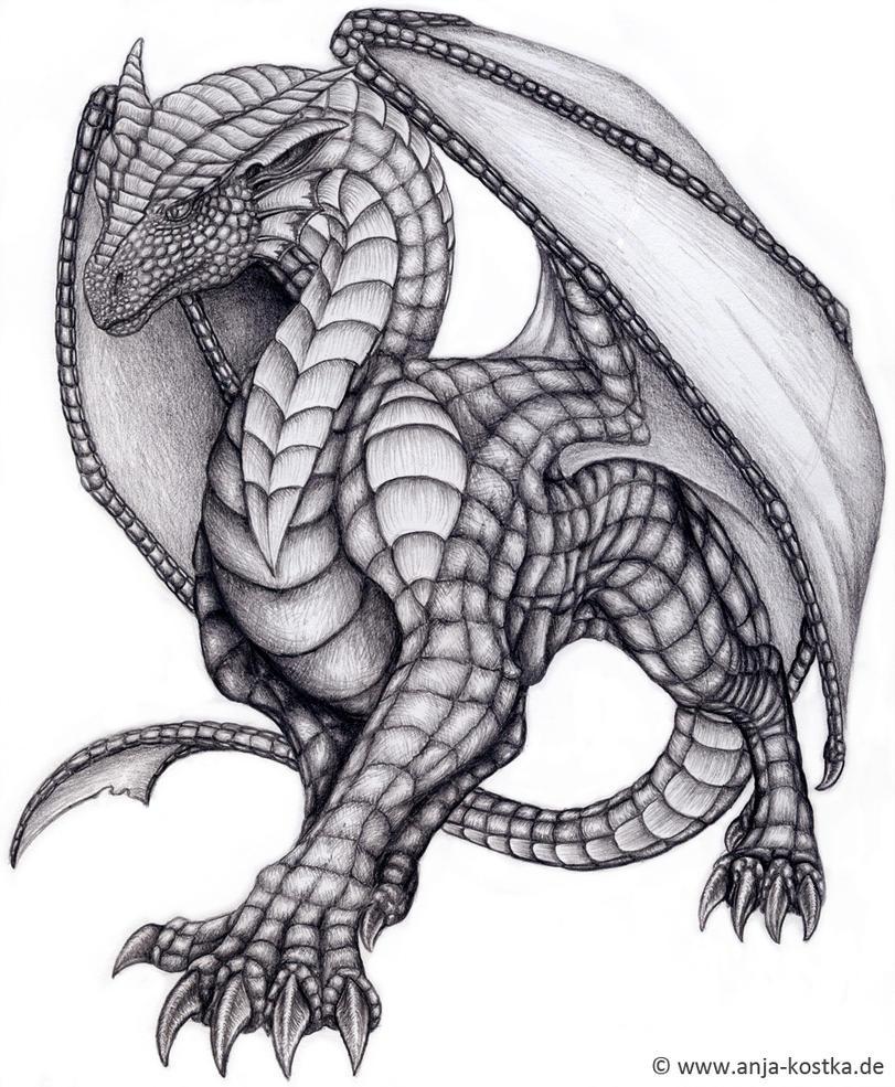 Dragon drawing by arkaedri on deviantart