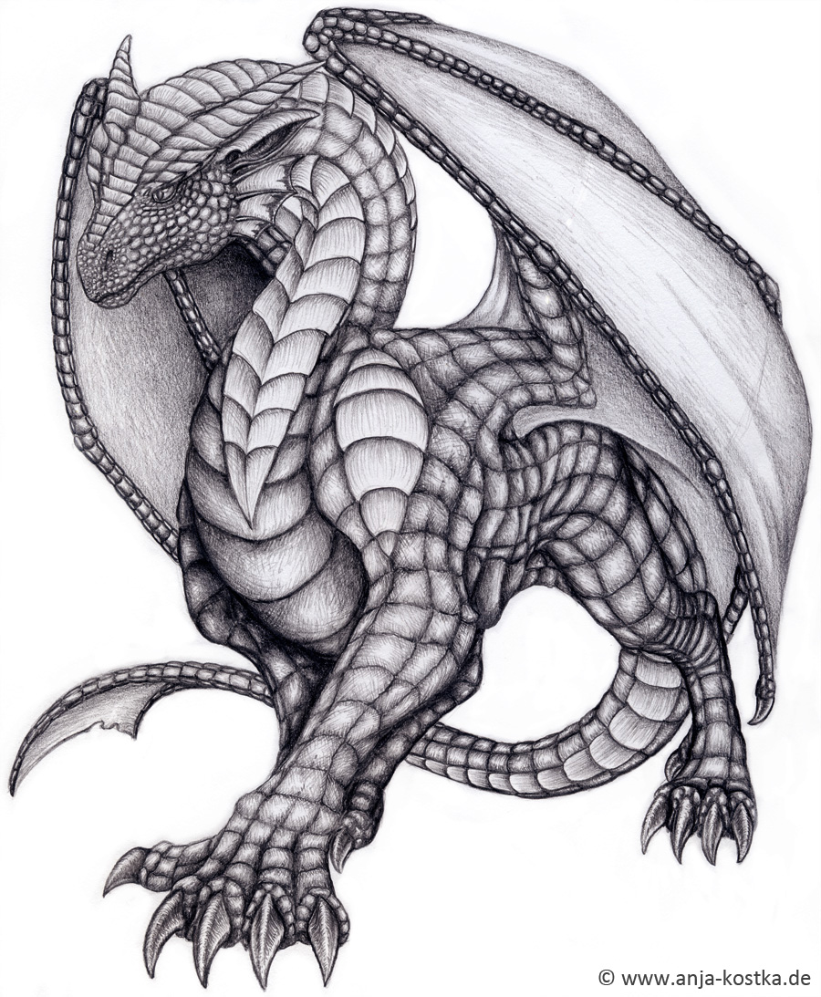 Dragon drawing by   90...