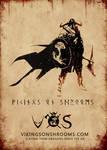 VOS poster 70x50cm