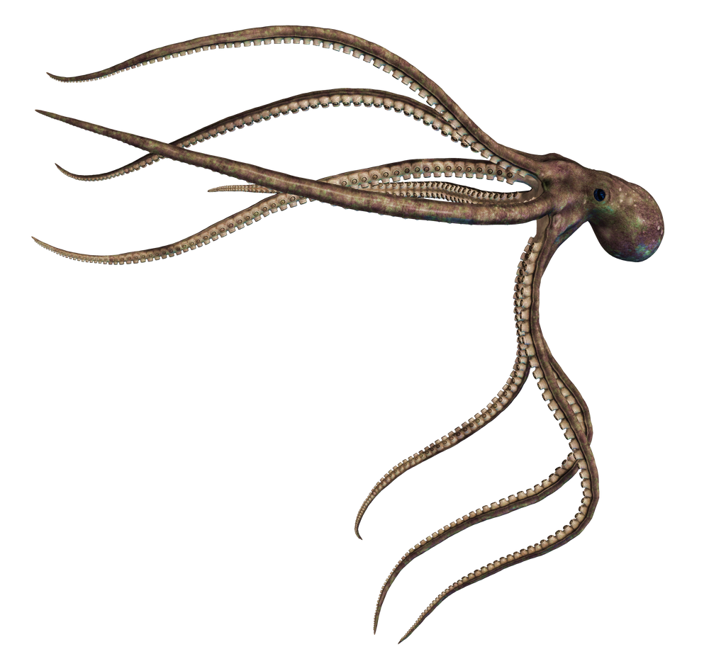 Giant Of The Deep  PNG Stock 03