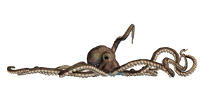 Giant Of The Deep  PNG Stock 04