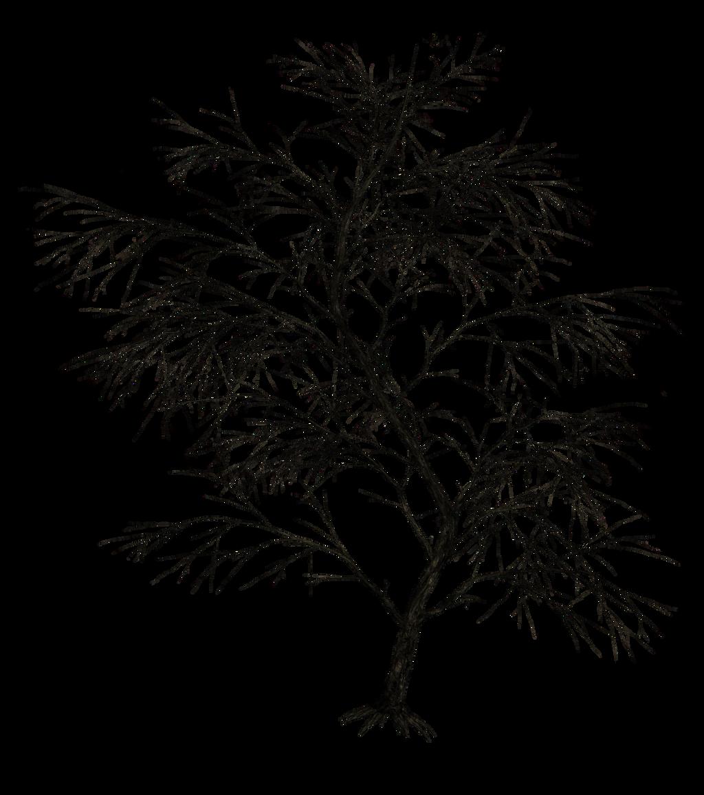 Line Art Picsart : Dark trees png stock by roy d on deviantart