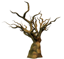 Dead Tree PNG Stock by Roy3D