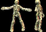 Spooky Skeleton 02 PNG Stock